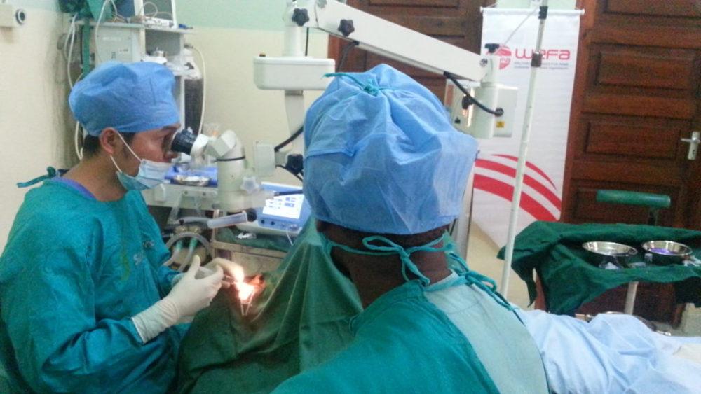 """WEFA, katarakt ameliyatı bedelini karşılayan hayırseverler adına ameliyatlar yaptığı gibi, """"Katarakt Fonu""""nda biriken bağışlarla da katarakt ameliyatları gerçekleştirerek, binlerce insanı sağlığına kavuşturmaktadır."""