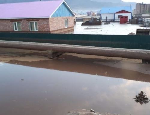 Moğolistan'daki Selzedeler İçin WEFA Acil Yardım Çağrısında Bulundu