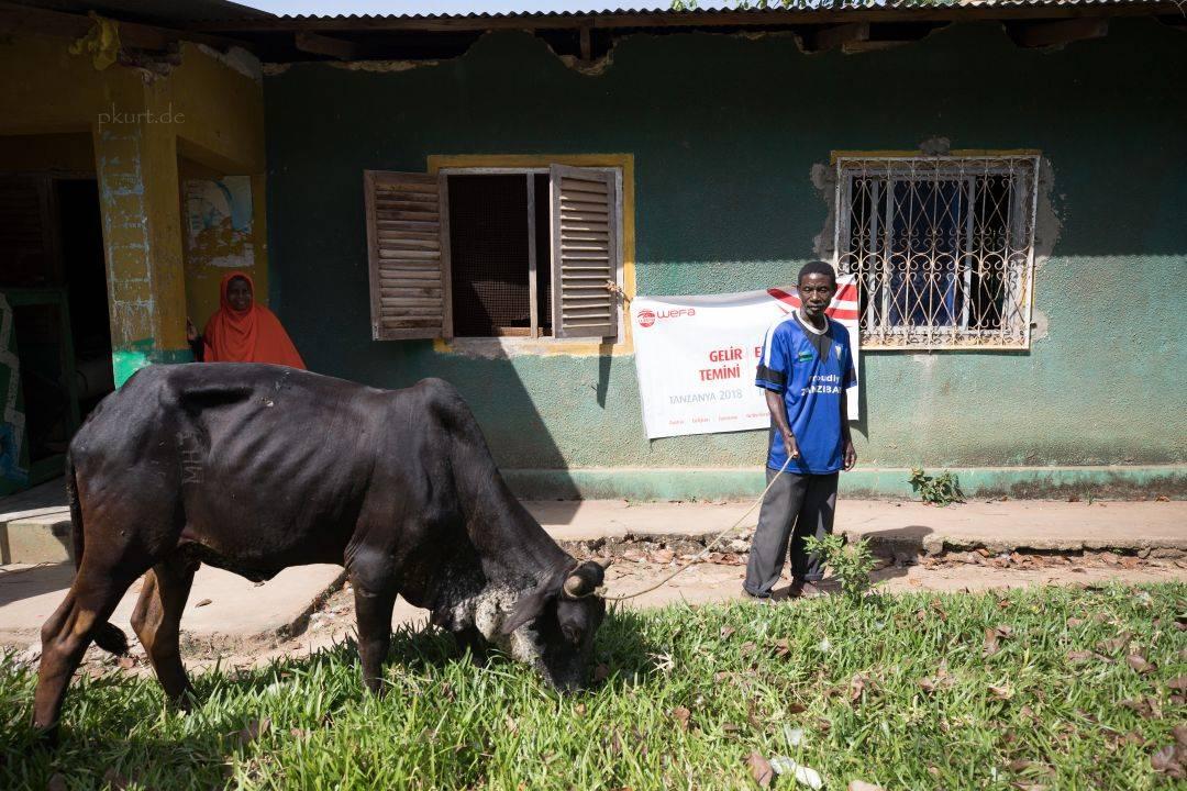 """WEFA Uluslararası İnsani Yardım Organizasyonu """"Gelir Temini"""" projesi kapsamında 10 süt ineğini Tanzanya'daki ihtiyaç sahibi ailelere hediye etti."""