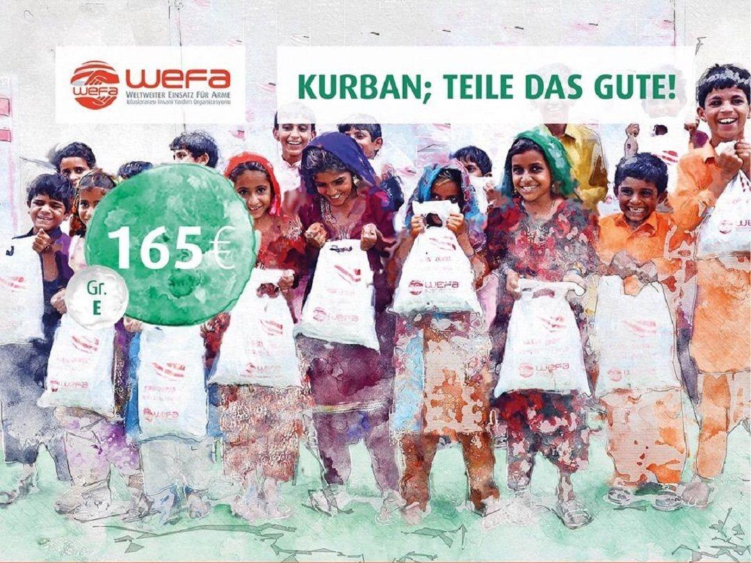 Kurban yardımları kapsamında Türkiye'deki ihtiyaç sahiplerine bu yıl da kurban eti ulaştıracak olan WEFA, bu sene Türkiye'de 5 ayrı şehirde kurban çalışmalarını gerçekleştirecek.