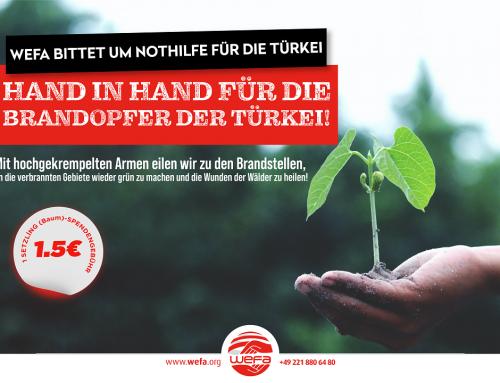 Waldbrände in der Türkei! BAUMSPENDE-AKTION