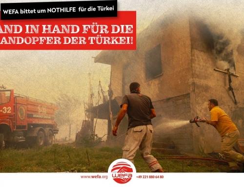Waldbrände in der Türkei: WEFA startet eine NOTHILFE-Kampagne!